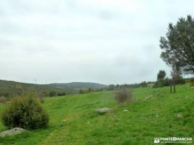 Alcornocal Dehesa Vieja-Atalaya Arrebatacapas;o camiño dos faros sendas de madrid rio tajuña
